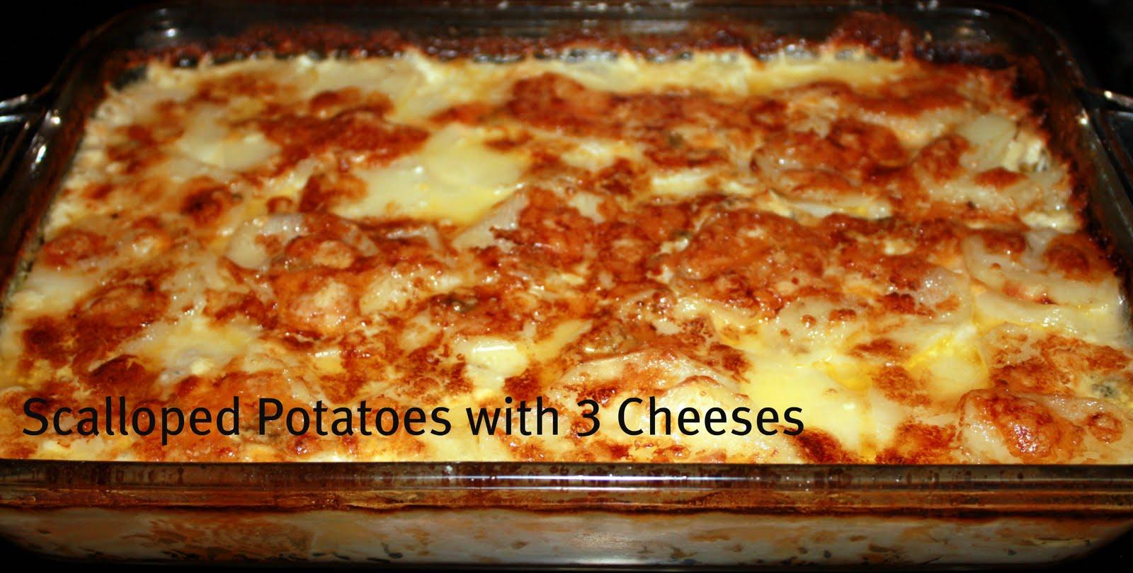 Cheesy scalloped potatoes recipes